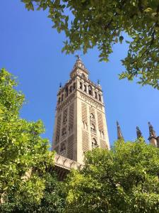 La Giralda, part of the world's third largest (largest gothic) cathedral
