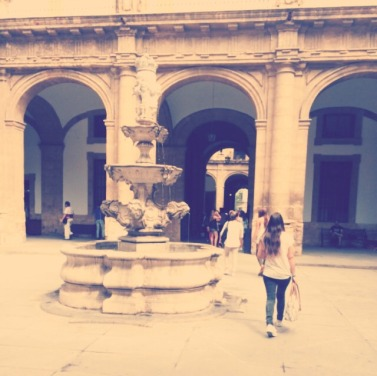 One of the beautiful courtyards in the Universidad de Sevilla