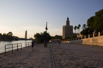 Just another one of my million photos along the beautiful river here in Sevilla with the Torre del Oro on the right